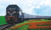 Железнодорожные перевозки из Китая в Акалтын